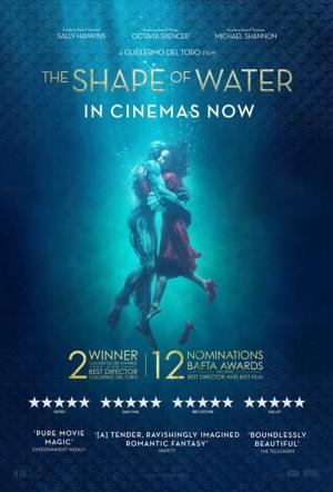 The Shape Of Water 2017 Hindi 480p 720p 1080p BluRay Dual Audio [Hindi DD5.1 - English DD5.1] x264