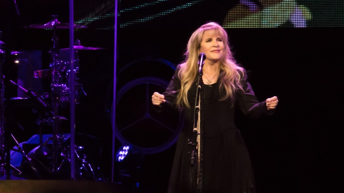 Stevie Nicks: 24 Karat Gold
