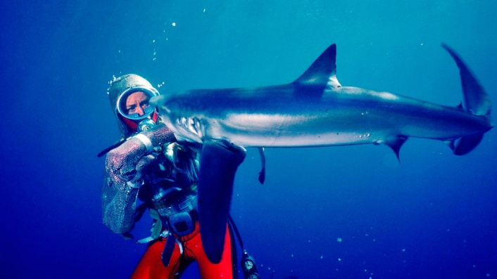 Valerie Taylor: Playing with Sharks