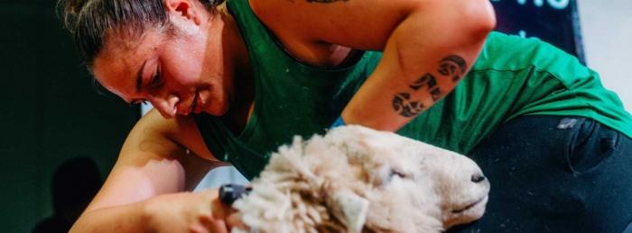 She Shears (E)