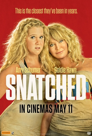Snatched Film Poster