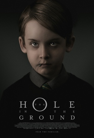 The Hole in the Ground Film Poster