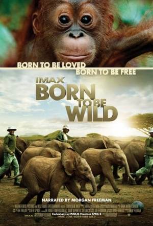 Born To Be Wild Film Poster