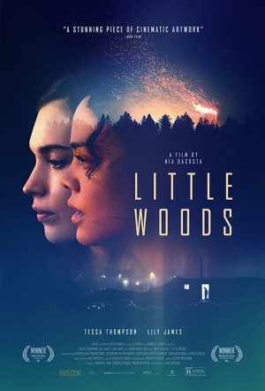 Little Woods Film Poster