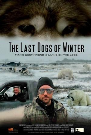 The Last Dogs Of Winter