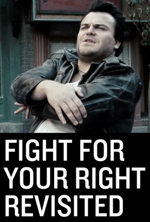 Fight for Your Right Revisited Film Poster