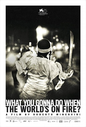 What You Gonna Do When The World's On Fire? Film Poster
