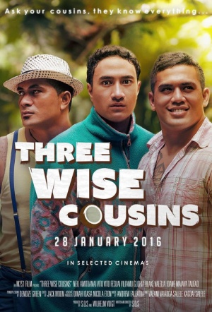 Three Wise Cousins Film Poster