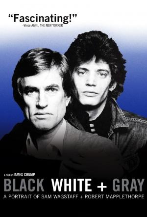 Black White + Gray