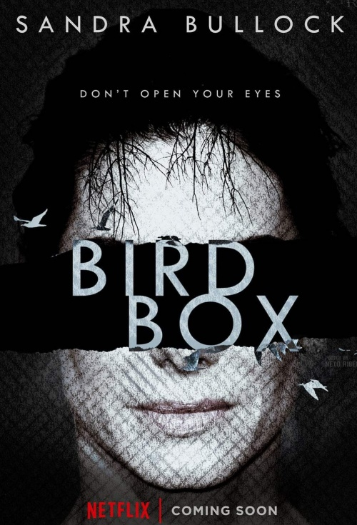 movie poster for bird box flicksconz