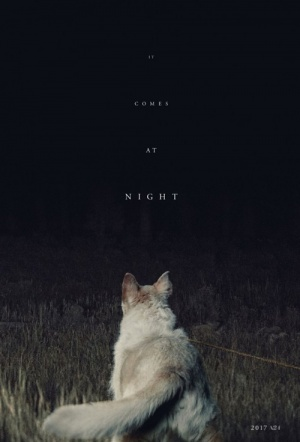 It Comes At Night Film Poster