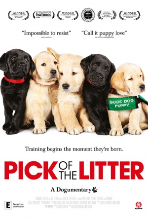 Pick of the Litter Film Poster