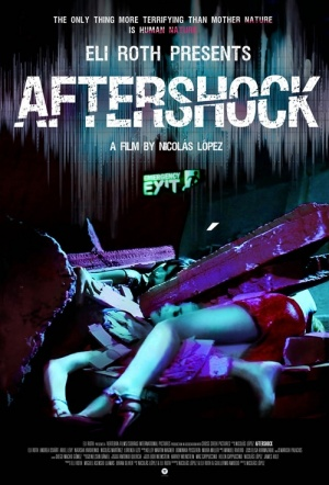 Aftershock (2013) Film Poster