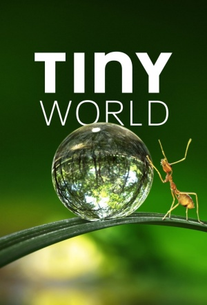 Tiny World: Season 1