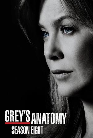 Grey's Anatomy: Season 8